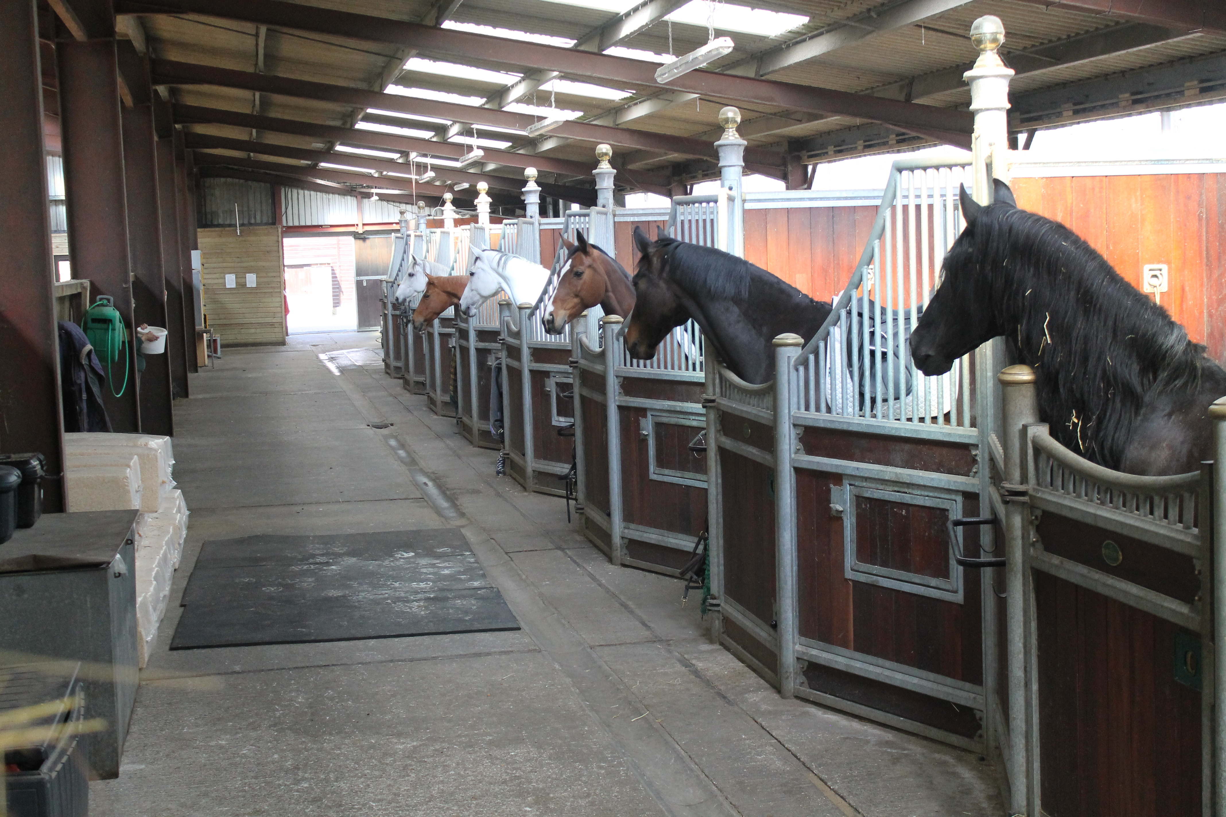 Berkshire Riding Centre Bhs Approved Riding School And